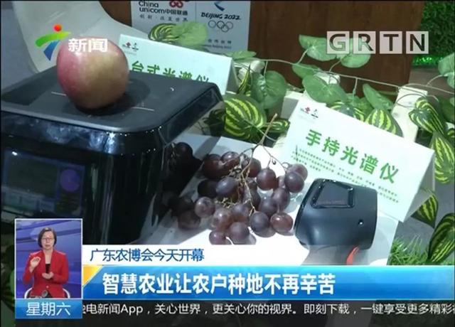 广东电视台对C-Life智慧农业进行报道