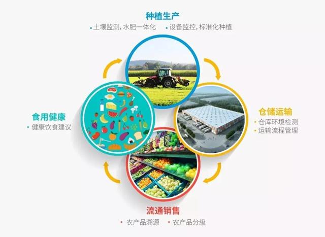 从田间到餐桌,C-Life智慧农业致力于打造一个健康饮食安全闭环